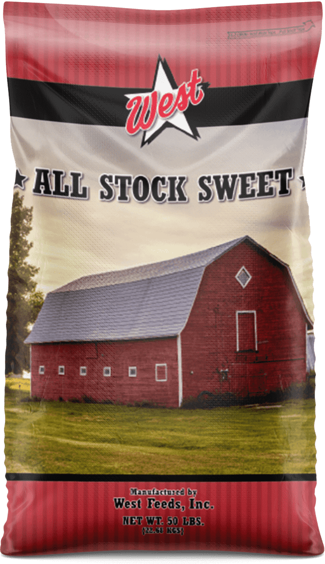 all stock feed bag