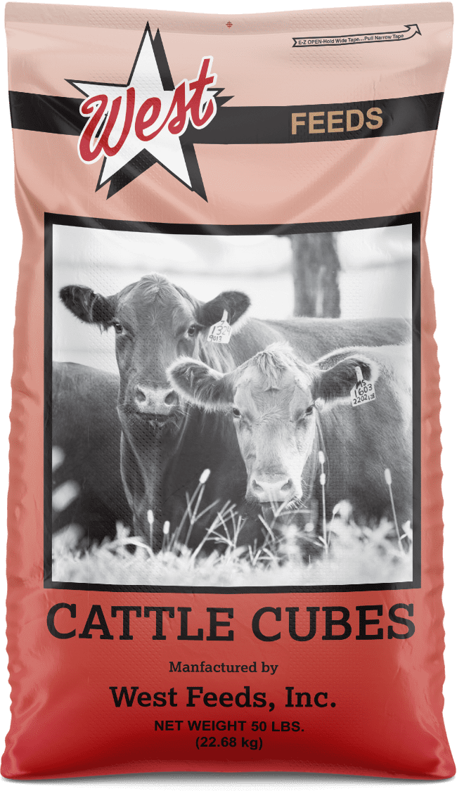 cattle cubes feed bag
