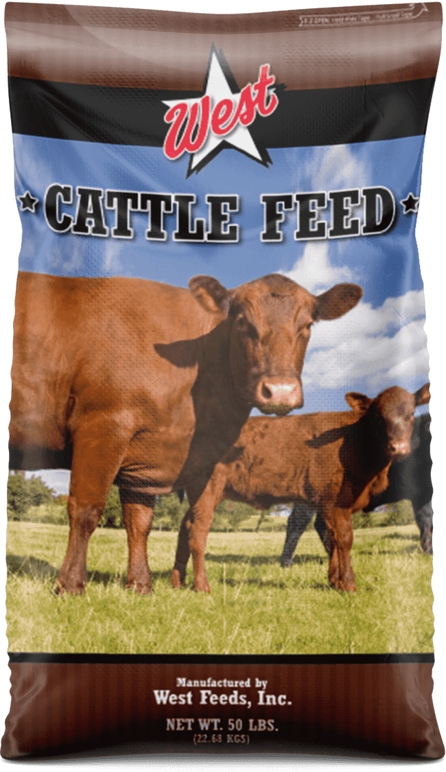 cattle feed bag