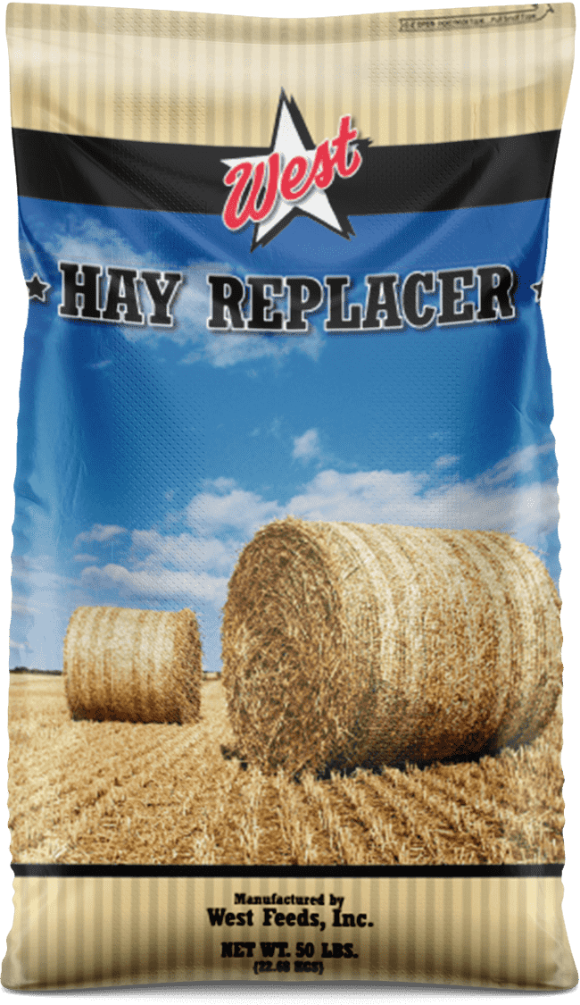 hay replacer feed bag