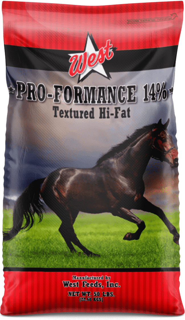 pro formance 14 horse feed bag