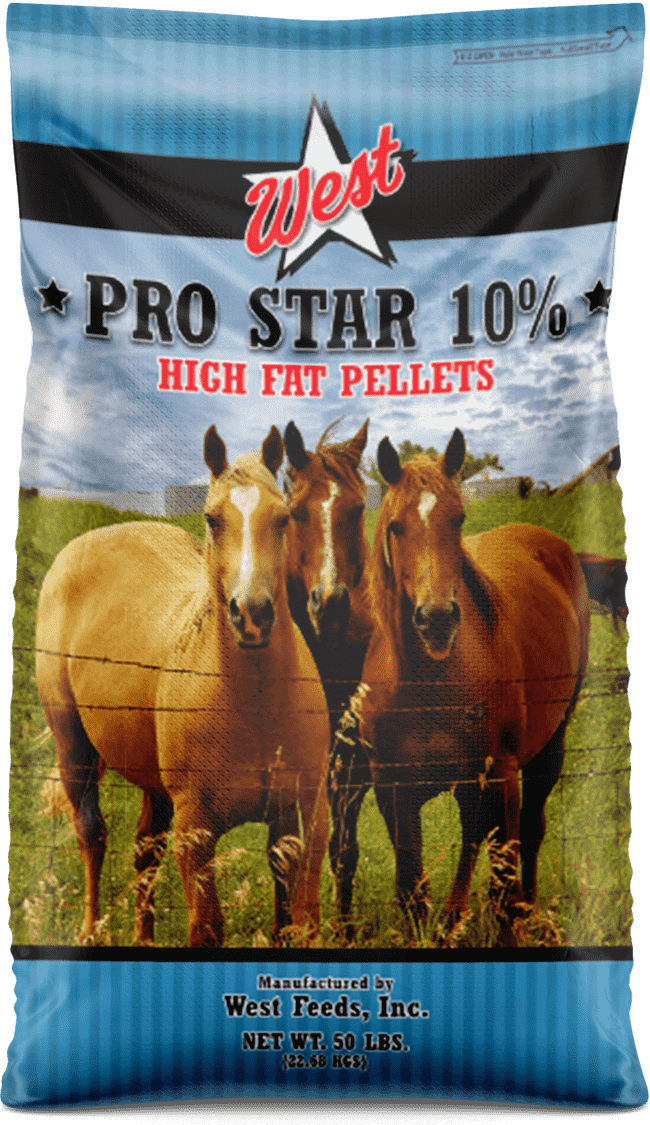 pro star high fat horse feed bag